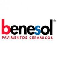 BENESOL